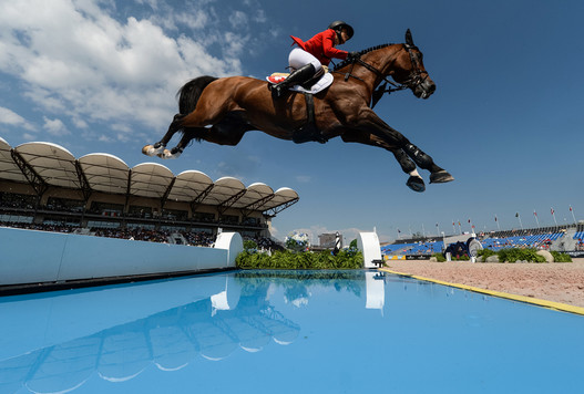 FEI World Equestrian Games™ Tryon USA Janika Sprunger of Switzerland on Bacardi VDLPhoto FEI/Martin Dokoupil